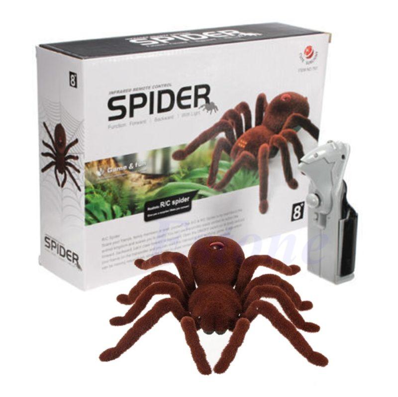 rc spider