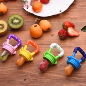 fresh food fruit pacifier for babies feeder
