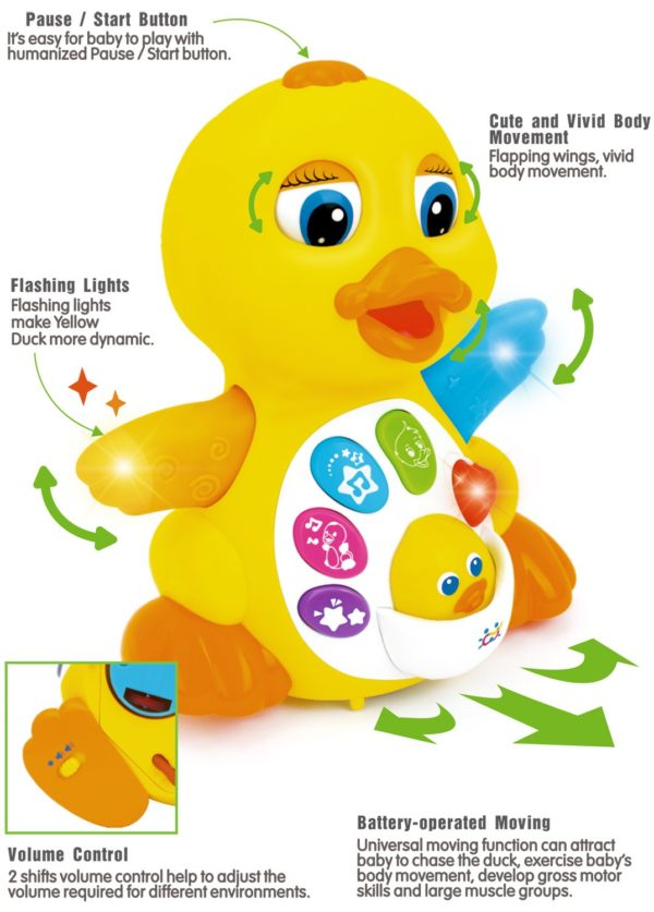 features of the flappy music duck educational toy